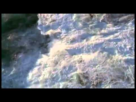 Nova: Permian Extinction