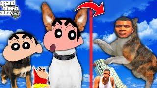 GTA 5 : SHINCHAN PINCHAN DOG & FRANKLIN CAT Playing HIDE and SEEK  in GTA 5   AMAANT