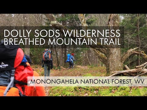 dolly-sods-wilderness-–-breathed-mountain-trail-–-dobbin-grade-trail-–-monongahela-national-forest
