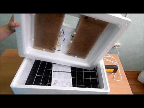 Закладка яиц в инкубатор – как правильно заложить яйца в