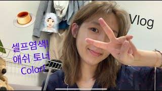 [일상 Vlog] 한글날 MZ시대 답게 아이패드로 편집…