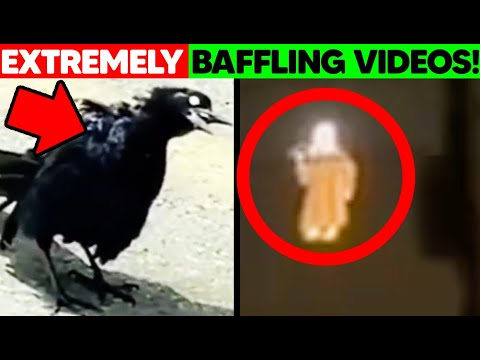 13 STRANGEST And CREEPY Videos FOUND Online In 2020!
