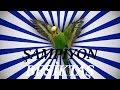 ŞAMPİYON BEŞİKTAŞ SES Papağan ve Muhabbet Kuşu Konuşturma Sesi Ses Kaydı 1 SAAT mp3 indir