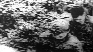 American soldiers being taken as prisoners in Vietnam by Viet Cong HD Stock Footage