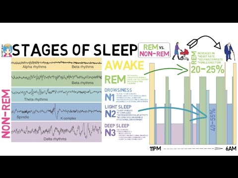 INSTANT NEURO - Stages of Sleep