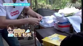 [Got7] (ฮามาก) Jackson Wangคนแมน ผู้กลัวแมลงตัวเล็กๆ
