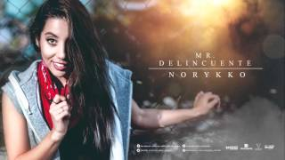 Norykko - Mr. Delincuente