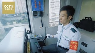 Документальные фильмы Это Китай Серия 1 Ритмы Чунцина[Age 0+]