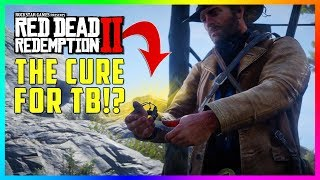 red dead redemption 2 fast money