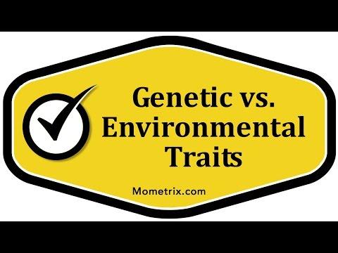 Genetic vs. Environmental Traits