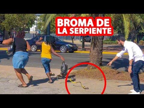 Las Mejores BROMAS De La SERPIENTE l Humor l Videos De Risa
