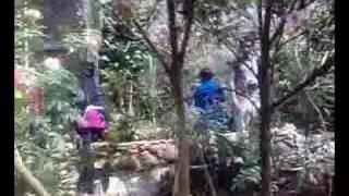حديقة الفراشات -  بـمـالـــيــــزيـا Butterfly Farm in Malaysia