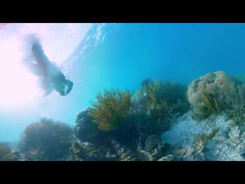Sneak Peek׃ Dive into Valen's Reef 360 video ¦ Conservation International CI