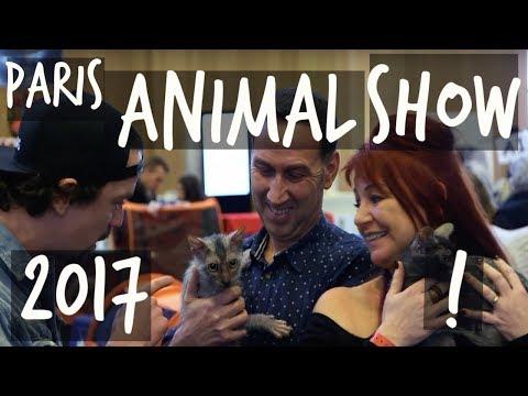PARIS ANIMAL SHOW 2017 : J'AI MATCHÉ AVEC UN CHAT LOUP-GAROU !
