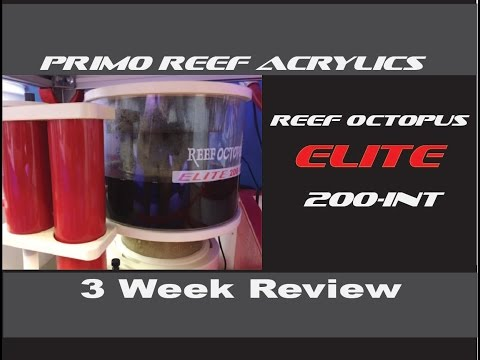 reef-octopus-elite-200-int-(2.5-week-review)