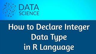 R Language Declare Integer DataType