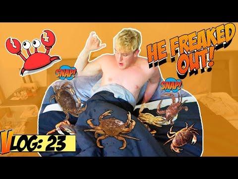 CRABS IN JAKE PAULS BED (PRANK!!)