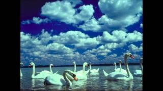 Six Chansons de Paul Hindemith.wmv