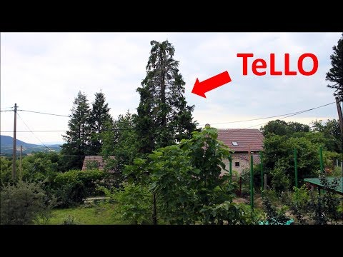 TeLLO SEARCH AND RESCUE STRATEGY