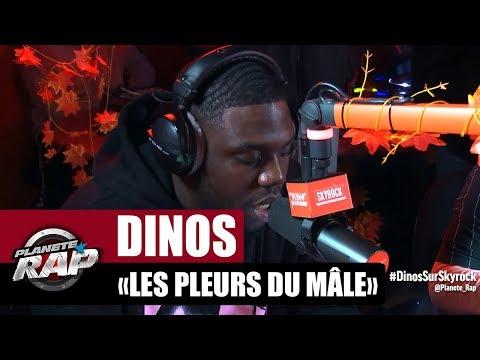 Youtube: Dinos«Les pleurs du mâle» #PlanèteRap