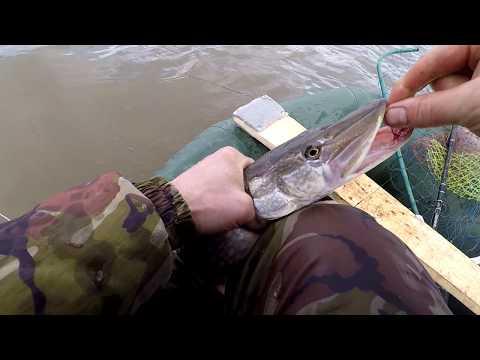 летняя рыбалка на щуку - 2017-10-23 13:43:38