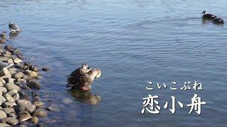 オリジナルは村上幸子さんの歌唱で1986年にリリースされました。瀬...