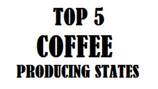 TOP 5 COFFEE PRODUCING STATES IN INDIA