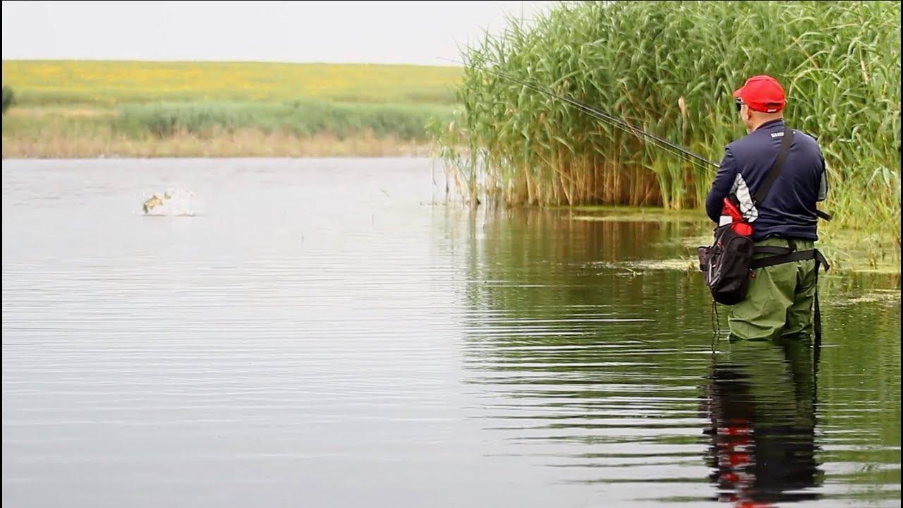 Pescuit la Răpitori cu Gyorg - Cum să prinzi știucă de pe mal cu 3 tipuri de năluci