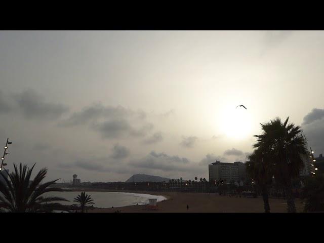 Pols sahariana envaint el cel de Barcelona - Març 2021