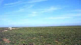 エクストラマドゥーラ メリダから南下中