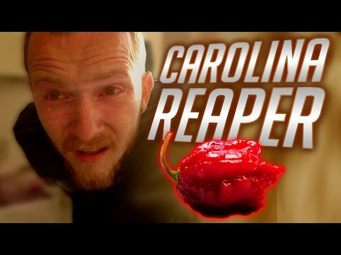 🔥 This Is Carolina Reapers Challenge, Will It Survive saBotage?! 100 Subscriber Special Challenge!