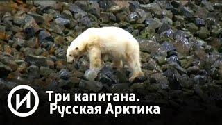 "Три капитана. Русская Арктика   Телеканал ""История"""
