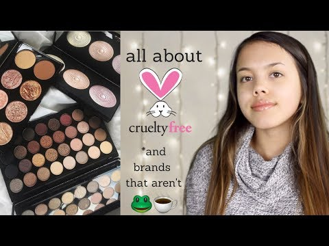 WHAT BRANDS DO & DON'T TEST ON ANIMALS | How to Go Cruelty Free!