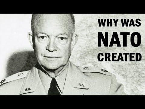 Why Was NATO Created | US Army Documentary | 1958