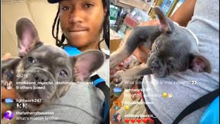BMF Lil Meech Buys A French Bulldog In Bodega