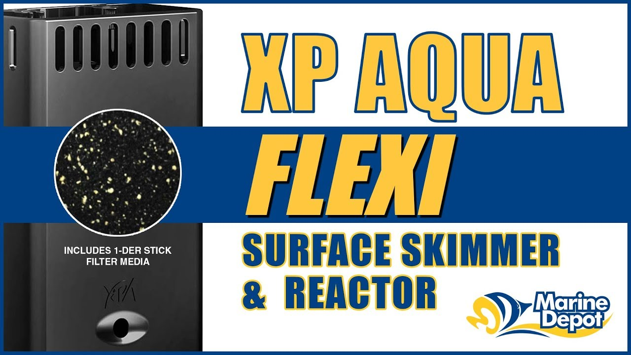 XP Aqua Flexi Surface Skimmer & Media Reactor - What YOU Need to Know Thumbnail