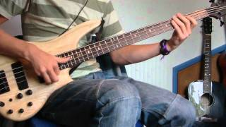 Red Hot Chili Peppers - Hump de Bump [Bass Cover]