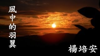 楊培安風中的羽翼(楊培安) 作詞:陳國華作曲:陳國華黑夜過後太陽就要升...