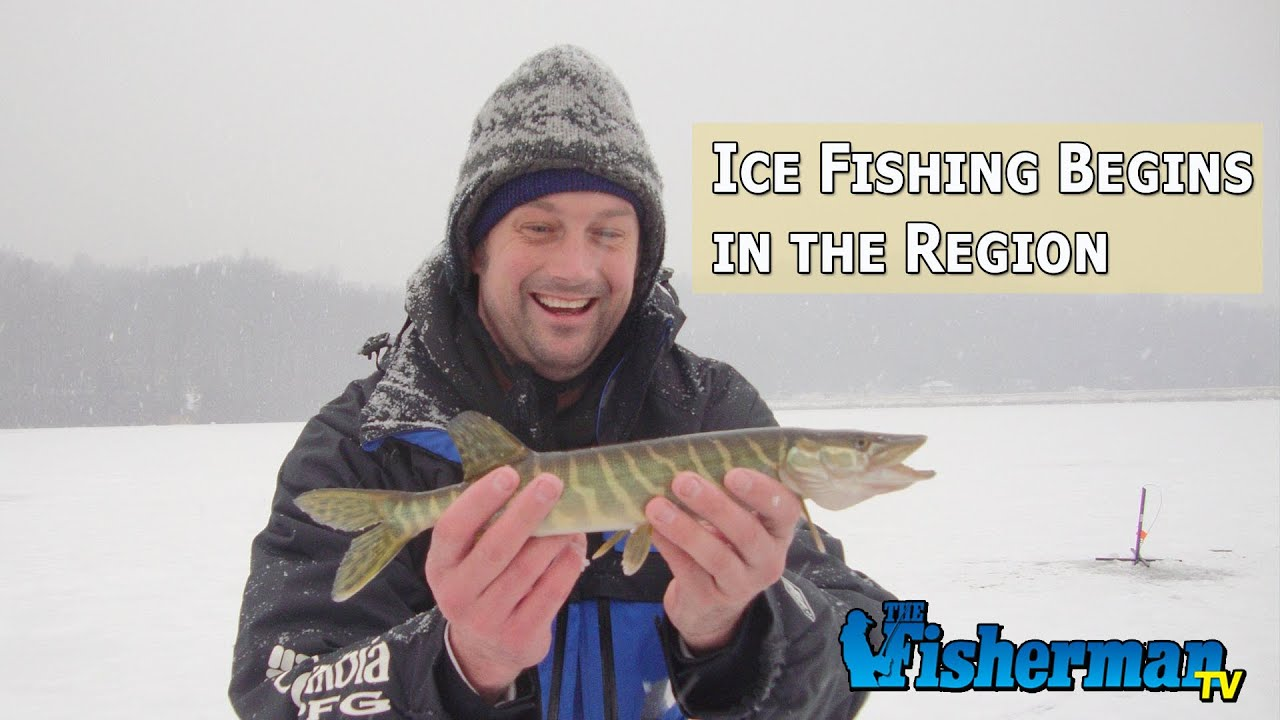 January 12 2015 new jersey delaware bay fishing report for De fishing report