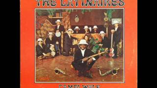 Camel Walk - THE LATINAIRES