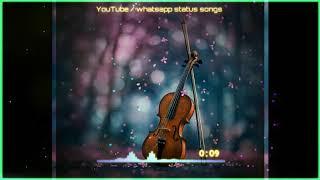 tu dhar hai nadiya ki whatsapp status  | musical creates mc | mc status