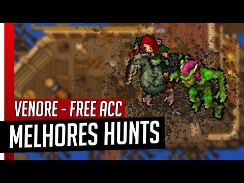 Tibia - MELHORES HUNTS FREE ACCOUNT - Venore
