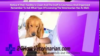 24 hour veterinary clinic