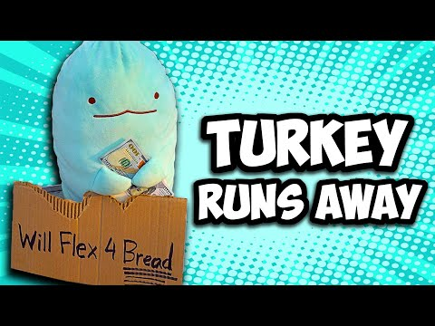 TURKEY Vlogs: Turkey Runs Away!