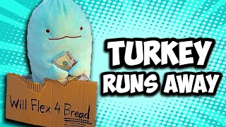TURKEY Vlogs: Turkey Runs Away!