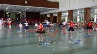 迦密唐賓南紀念中學銀樂隊color guard Team A
