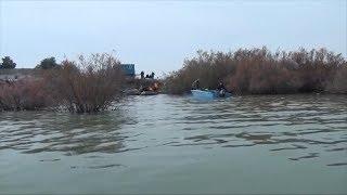 Волонтеры помогают бороться с браконьерами в Шардаре