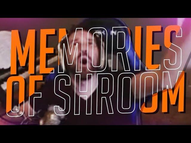 memories-of-shrooms-bestiny-of-destiny-8