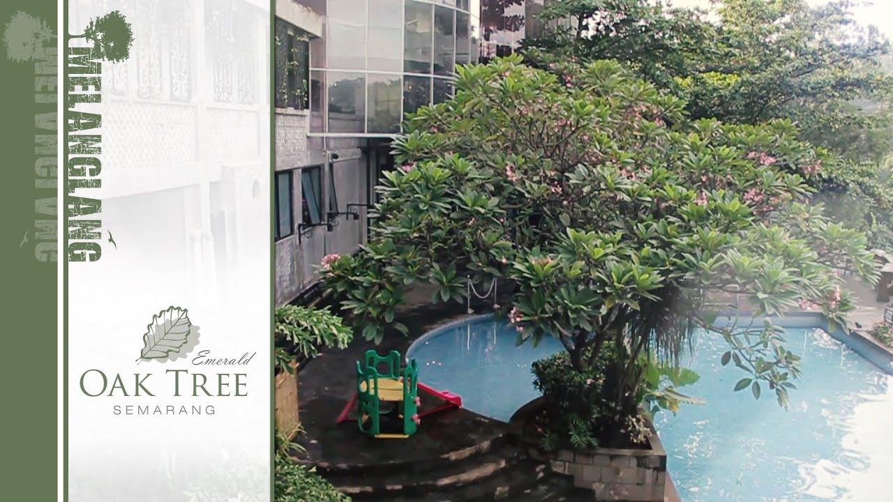 Oak Tree Emerald Hotel Semarang Indonesia Melanglang Youtube