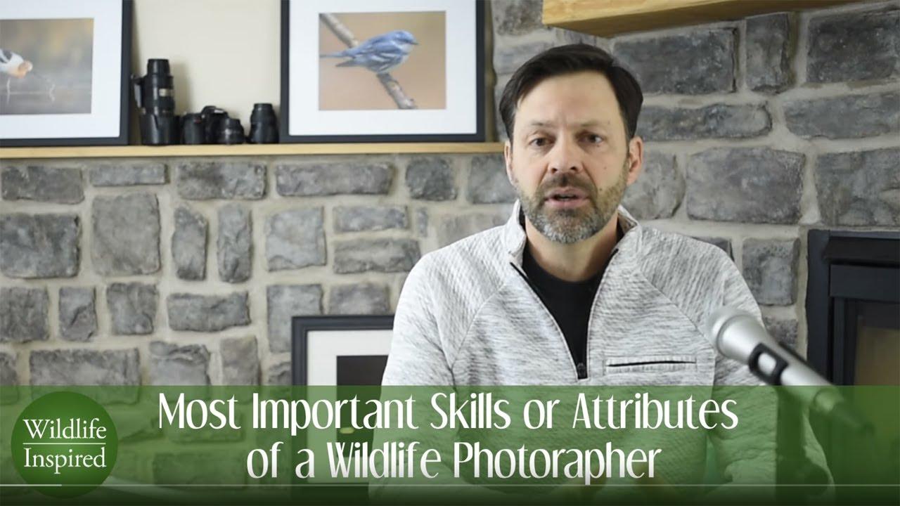 5 Important Characteristics of Wildlife Photographers